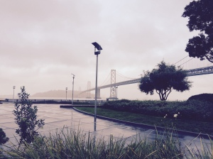bridge in rain