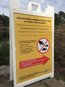 Sign.Mtn Lake