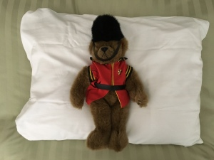 Bear on pillow