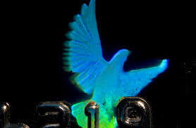holographic dove